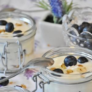 Jak připravit domácí jogurt?